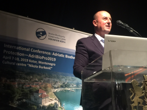 Dr Aleksandar Joksimović at Conference opening
