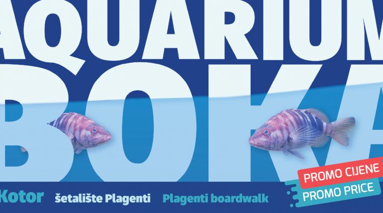 Visit Aquarium Boka at promotional prices